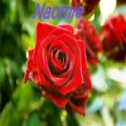 medium Naomie